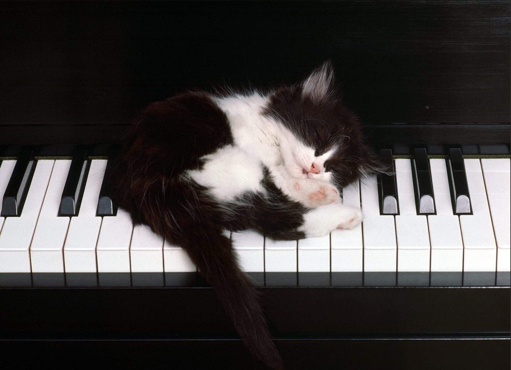Comment-choisir-son-piano